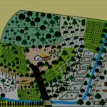 Projeto Vida no Campo e Sistemas Agroflorestais