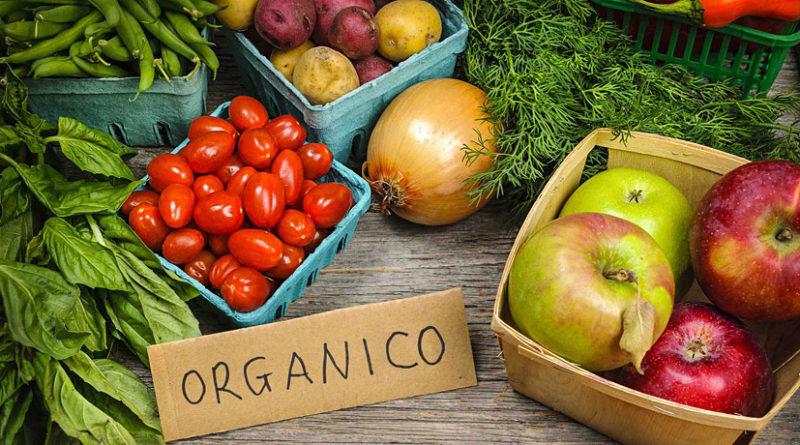 Vamos exportar Orgânicos