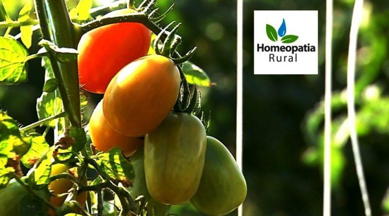 Guia de Homeopatia na Agricultura